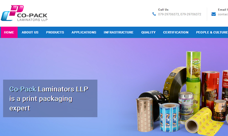 Company WP Website Development